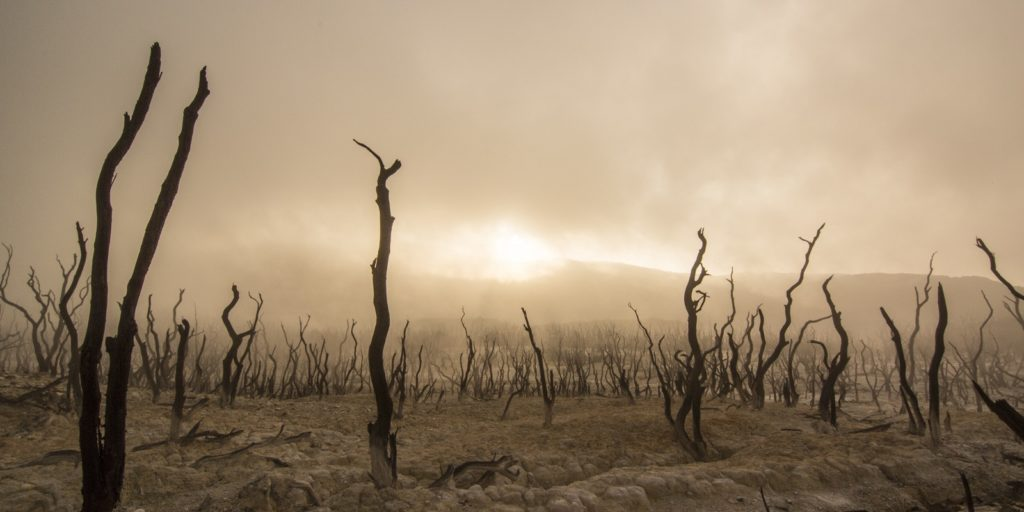 A globális felmelegedés hatására világszerte egyre szélsőségesebbé válhat az időjárás.