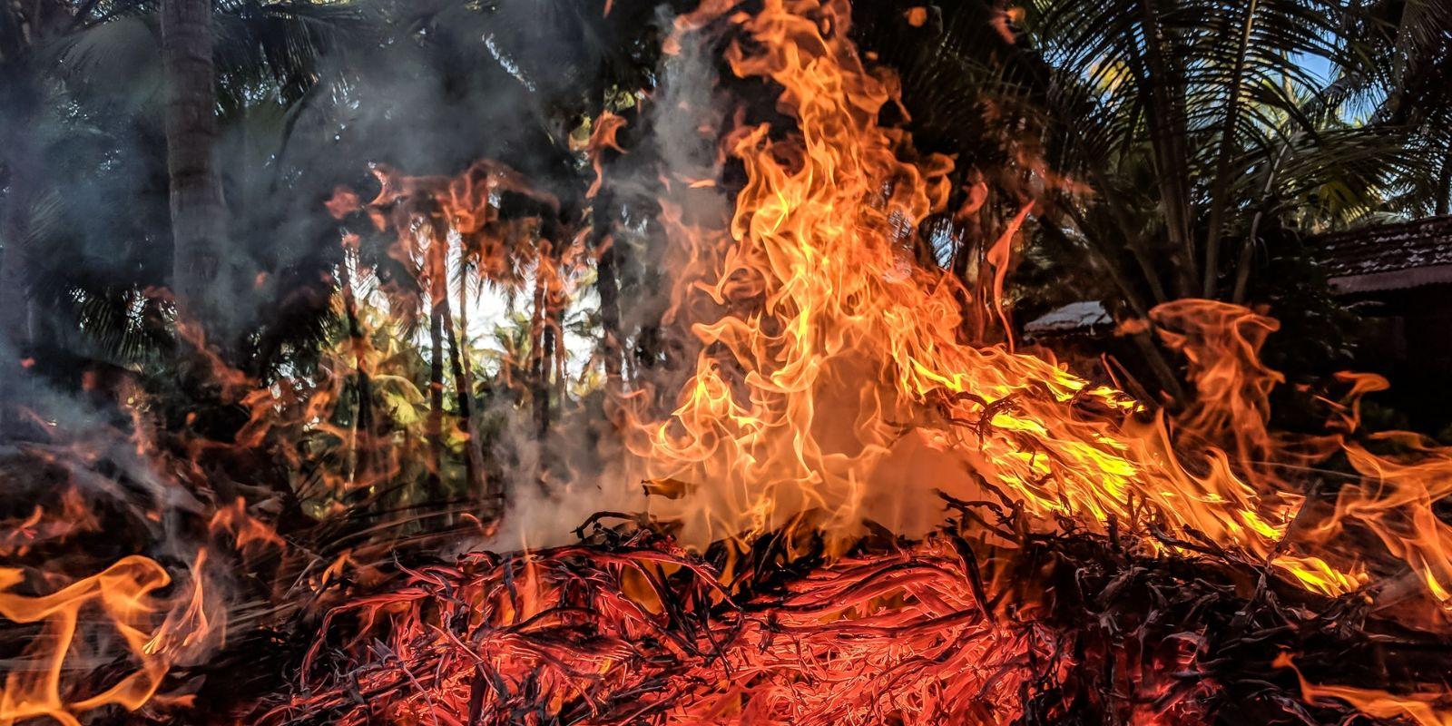 Ipari-levegőszennyezés, erdőtűz, mint a legfőbb globális kornyezeti probléma