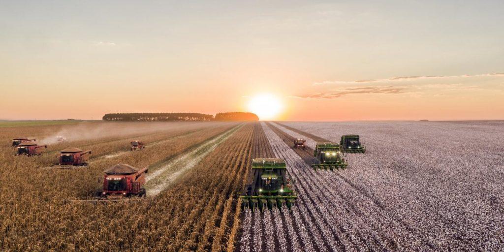 Mezőgazdaság és vegán étkezés