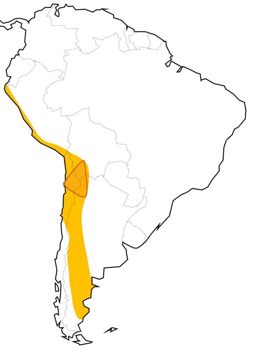 """A dél-amerikai """"Lítium-háromszög"""". Forrás: wikipedia"""