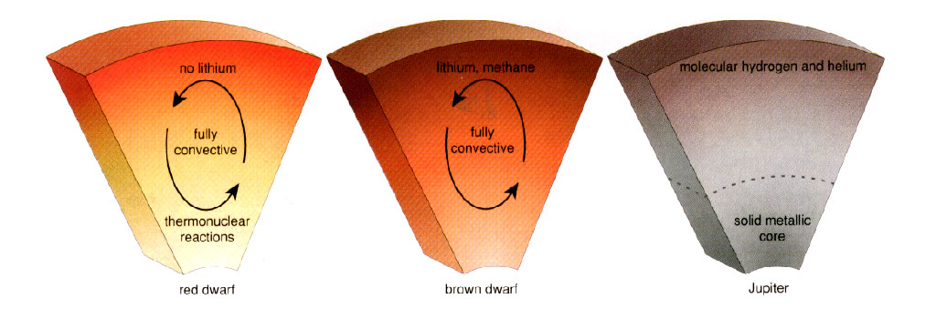 A lítium az alacsony tömegű barna törpe csillagokban túléli a csillagokon belüli folyamatokat. Forrás: stsci.edu